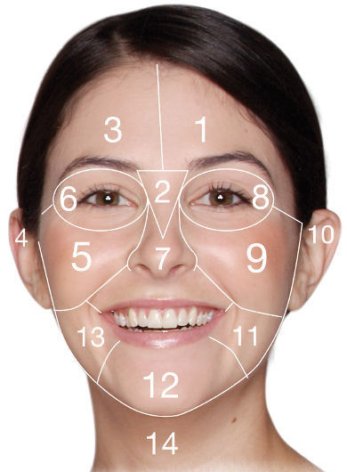 face_mapping_dermalogica