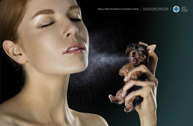 coree-du-sud-tests-animaux-interdits-cosmetiques-asiatiques