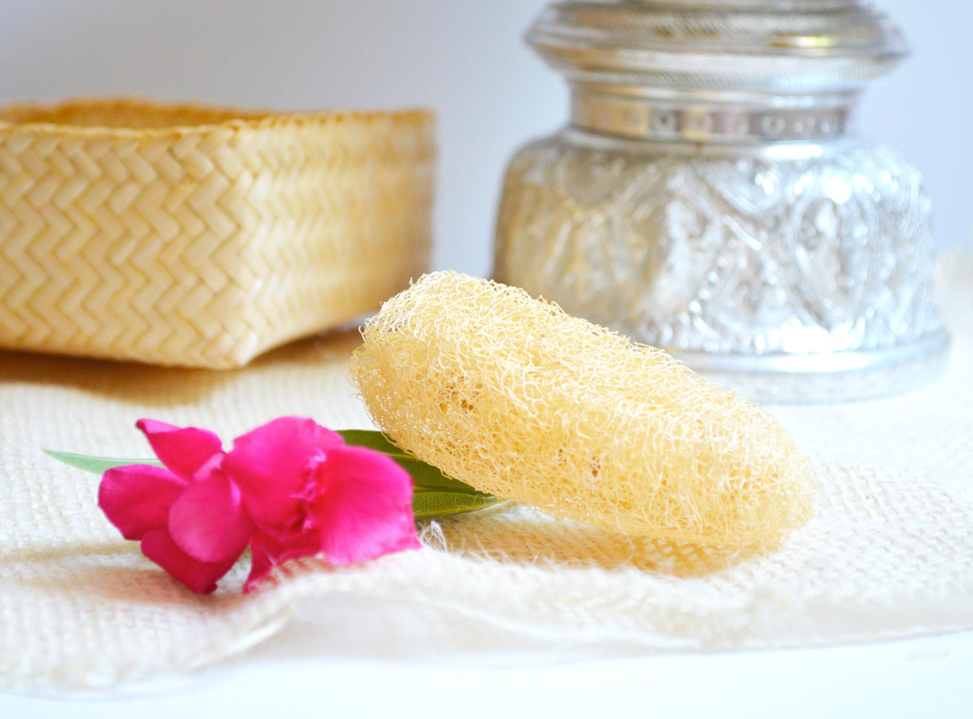 loofah-eponge-exfoliante-bodia-nature-cambodge