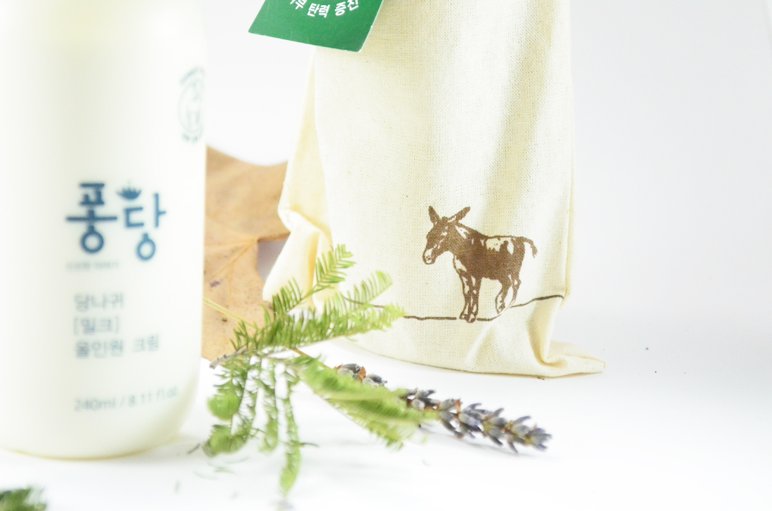 pongdang-donkey-milk-all-in-one-cream-review-blog-kbeauty